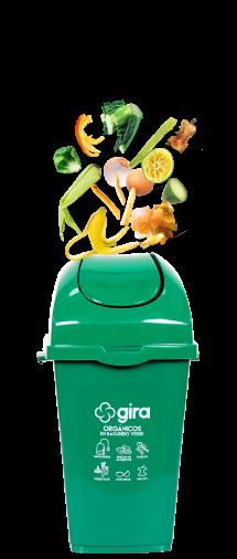 tarro-verde