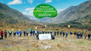 Plan de reforestación GIRA